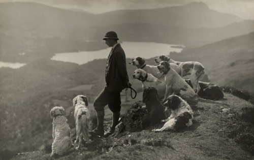 Dogs help a Scottish gamekeeper keep watch in Aberfoyle, Scotland, March 1919. PHOTOGRAPH BY WILLIAM REID, NATIONAL GEOGRAPHIC